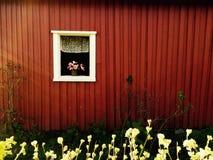 Λίγο παράθυρο Στοκ Φωτογραφία