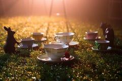 Λίγο τσάι κοιλαίνει στη χλόη στον ήλιο ρύθμισης Στοκ Φωτογραφία