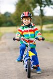 Λίγο χαριτωμένο αγόρι παιδιών στο ποδήλατο στο καλοκαίρι ή autmn την ημέρα Υγιές ευτυχές παιδί που έχει τη διασκέδαση με την ανακ Στοκ εικόνες με δικαίωμα ελεύθερης χρήσης