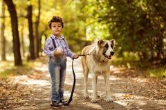 Λίγο χαριτωμένο αγόρι που παίζει με το σκυλί του Στοκ εικόνες με δικαίωμα ελεύθερης χρήσης