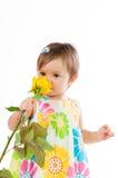 Λίγο χαριτωμένο κορίτσι που μυρίζει έναν κίτρινο αυξήθηκε, ρομαντικό δώρο Στοκ Εικόνες