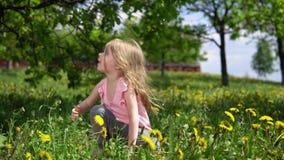 Λίγο χαριτωμένο κορίτσι που παίζει με τις πικραλίδες ηλιόλουστο ημερησίως άνοιξη φιλμ μικρού μήκους