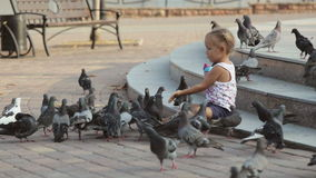 Λίγο χαριτωμένο κορίτσι ταΐζει τα περιστέρια κοντά στην πηγή απόθεμα βίντεο
