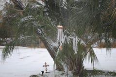 Λίγο χιόνι της νότιας Γεωργίας στοκ φωτογραφίες με δικαίωμα ελεύθερης χρήσης