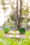 Λίγο flowerpot παπιών με το λουλούδι καρδιών Στοκ Εικόνες