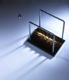 Λίκνο Newtons Στοκ φωτογραφίες με δικαίωμα ελεύθερης χρήσης