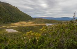 Λίμνες βουνών Morne Gros στοκ φωτογραφίες με δικαίωμα ελεύθερης χρήσης