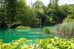 Λίμνες εθνική πάρκο-Κροατία Plitvice Στο απόγευμα το καλοκαίρι στοκ εικόνα με δικαίωμα ελεύθερης χρήσης