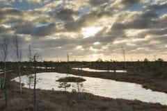 Λίμνες ελών στην ανατολή στοκ εικόνα με δικαίωμα ελεύθερης χρήσης