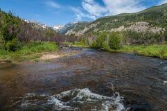 Λίμνες καστόρων κολπίσκου ψαριών στο δύσκολο εθνικό πάρκο Κολοράντο βουνών Στοκ φωτογραφίες με δικαίωμα ελεύθερης χρήσης