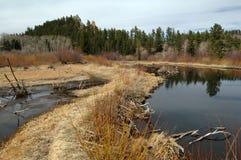 λίμνες καστόρων Στοκ φωτογραφίες με δικαίωμα ελεύθερης χρήσης