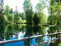 Λίμνες της αγάπης στο pleso Strbske στα βουνά Tatras Στοκ Εικόνα