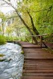 Λίμνες της Κροατίας Plitvice Στοκ εικόνα με δικαίωμα ελεύθερης χρήσης