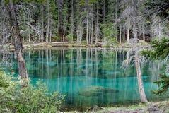 Λίμνες Grassi σε Canmore, Αλμπέρτα, Καναδάς στοκ εικόνες