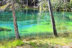 Λίμνες Grassi στοκ φωτογραφίες με δικαίωμα ελεύθερης χρήσης