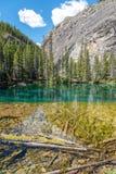 Λίμνες Grassi, Canmore, Αλμπέρτα στοκ εικόνα με δικαίωμα ελεύθερης χρήσης