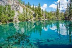 Λίμνες Grassi, Canmore, Αλμπέρτα στοκ εικόνες