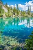 Λίμνες Grassi, Canmore, Αλμπέρτα στοκ εικόνες με δικαίωμα ελεύθερης χρήσης