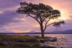 λίμνες killarney Στοκ εικόνες με δικαίωμα ελεύθερης χρήσης