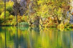 Λίμνες Plitvice, εθνικό πάρκο, Κροατία Στοκ Φωτογραφία