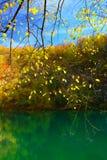 Λίμνες Plitvice, εθνικό πάρκο, Κροατία Στοκ εικόνα με δικαίωμα ελεύθερης χρήσης
