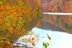 Λίμνες Plitvice, εθνικό πάρκο, Κροατία Στοκ φωτογραφίες με δικαίωμα ελεύθερης χρήσης