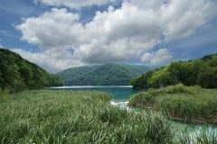 Λίμνες Plitvice, εθνικό πάρκο στην Κροατία Στοκ εικόνες με δικαίωμα ελεύθερης χρήσης