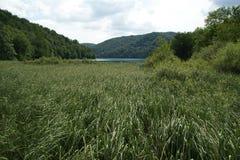 Λίμνες Plitvice, εθνικό πάρκο στην Κροατία Στοκ φωτογραφίες με δικαίωμα ελεύθερης χρήσης