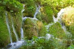 Λίμνες Plitvice - εθνικό πάρκο της Κροατίας Στοκ εικόνες με δικαίωμα ελεύθερης χρήσης