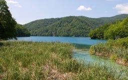 Λίμνες Plitvice - εθνικό πάρκο της Κροατίας Στοκ Εικόνες
