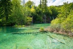 Λίμνες Plitvice της Κροατίας - εθνικό πάρκο το καλοκαίρι Στοκ Εικόνες