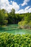 Λίμνες Plitvice της Κροατίας - εθνικό πάρκο το καλοκαίρι Στοκ φωτογραφία με δικαίωμα ελεύθερης χρήσης