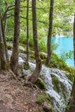 Λίμνες Plitvice της Κροατίας Στοκ Φωτογραφία
