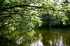 λίμνη ήρεμη Στοκ εικόνες με δικαίωμα ελεύθερης χρήσης