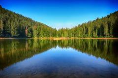 Λίμνη βουνών μεταξύ του πράσινου δάσους έλατου το γραφικό καλοκαίρι λ Στοκ φωτογραφία με δικαίωμα ελεύθερης χρήσης