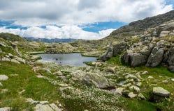 Λίμνη βουνών παγετώνων στους δολομίτες Brenta Στοκ φωτογραφίες με δικαίωμα ελεύθερης χρήσης