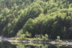 Λίμνη βουνών στο δάσος Στοκ φωτογραφίες με δικαίωμα ελεύθερης χρήσης