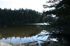 Λίμνη Γερτρούδη στο οχυρό Abercrombie, Αλάσκα Στοκ Φωτογραφίες