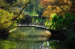 λίμνη κήπων Στοκ Φωτογραφίες