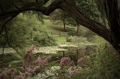 Λίμνη κήπων στοκ φωτογραφία