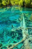 Λίμνη καθρεφτών Jiuzhaigou στοκ φωτογραφίες