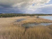 Λίμνη και δάσος κατά τη διάρκεια του χρόνου άνοιξη επάνω από την όψη Dabrowa Gorn στοκ φωτογραφίες με δικαίωμα ελεύθερης χρήσης