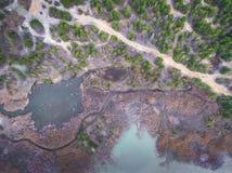 Λίμνη και δάσος κατά τη διάρκεια του χρόνου άνοιξη επάνω από την όψη Dabrowa Gorn στοκ εικόνα
