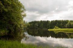 Λίμνη και δάσος Στοκ Φωτογραφία