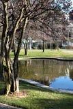 Λίμνη και δέντρα στο θερινό παλάτι Ihlamur Στοκ φωτογραφία με δικαίωμα ελεύθερης χρήσης