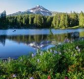 Λίμνη και ΑΜ Jefferson κογιότ στοκ φωτογραφία με δικαίωμα ελεύθερης χρήσης