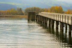 Λίμνη και ξύλινη γέφυρα στους τόνους φθινοπώρου Στοκ Φωτογραφίες