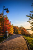 Λίμνη και πάρκο κατά τη διάρκεια του φθινοπώρου Στοκ φωτογραφία με δικαίωμα ελεύθερης χρήσης