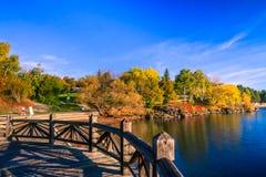 Λίμνη και πάρκο κατά τη διάρκεια του φθινοπώρου Στοκ Φωτογραφίες