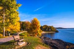 Λίμνη και πάρκο κατά τη διάρκεια του φθινοπώρου Στοκ Εικόνες